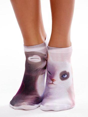 Skarpety stopki damskie w koty