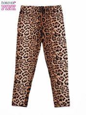 Kolorowe legginsy dziewczęce z nadrukiem panterki