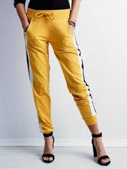 Żółte spodnie dresowe z lampasami