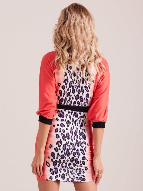 Koralowa sukienka z motywem panterki i czarnym paskiem                                  zdj.                                  2