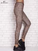 Brązowe legginsy animal print